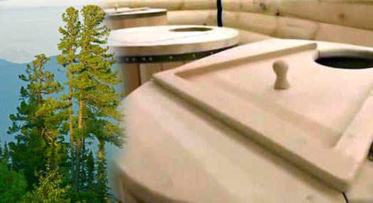 кедр для спа салонов