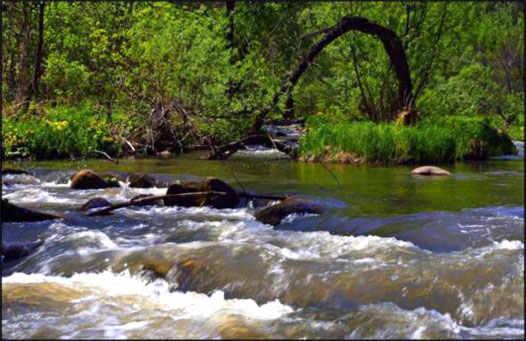 река на Алтаи