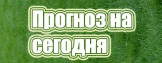 futbol_prognoz