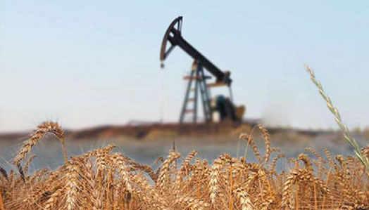нефть на зерно