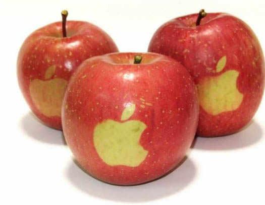 apple в будущем